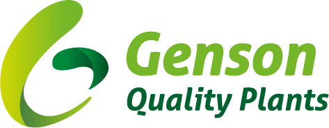 Genson Quality Plants